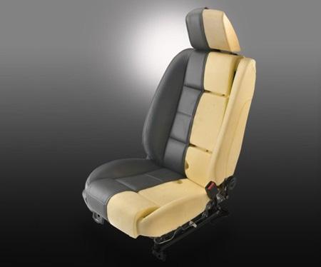 soy_seated_mustang.jpg