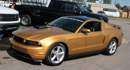 gold-mustang